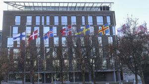 Nordiska flaggor i rad utanför riksdagens tillbyggnad i Helsingfors.