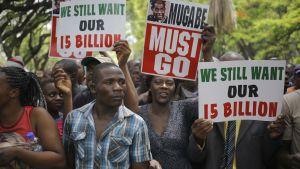 Demonstration mot Robert Mugabe i Harare 21.11.2017.