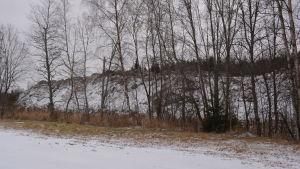 Föreningen har låtit bygga bullervallar runt området
