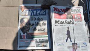 Tidningar i Zimbabwe