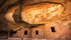 De här 800 år gamla ruinerna hör till de cirka 100 000 arkeologiska platser som finns i Bears Ears.