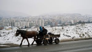 Unga män med häst och vagn i förorten Fakulteta, där det bor många romer.