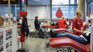 Folk utspridda på britsar för att donera blod till Blodtjänst.