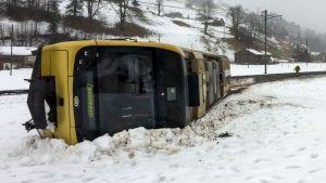Tågvagn har fallit av spåret nära Lenk i Schweiz.