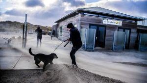 Kraftiga vindar på stranden Hoek van Holland i Nederländerna den 18.1.2018.