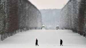Versailles intäkt i snö