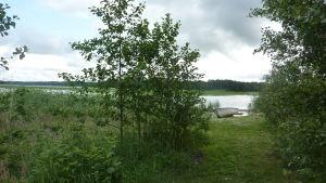 En grönskande strand vid Ekåsensn sjukhus i Ekenäs.