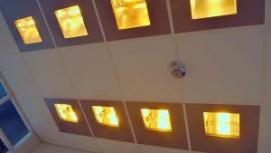 Dagsljus-PDT lamporna