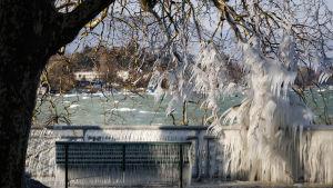 Istäckt bänk vid Genèvesjön, Schweiz.