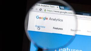 Google analytics under lupp.