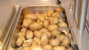 Potatis som skolmat.