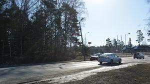 T-korsningen vid Bottenviksvägen