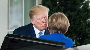 Trump med plutande mun vid Angela Merkels kind vid ankomsten till Vita huset.