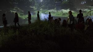 Ihmisiä tutkimassa Australian paviljongin puutarhaa ja heijasteita seinällä Venetsian biennaalissa