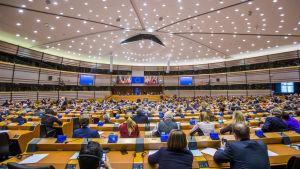 Europaparlamentet i Bryssel 2017