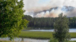 Skogsbränder i närheten av Ljusdal i Sverige.
