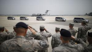 Amerikanska soldater gör honnör för kvarlevorna på flygbasen Osan i Pyeongtaek, Sydkorea, 27.7.