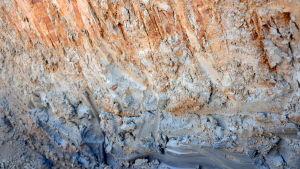 Längst ner i bilden den svarta sulfatleran och ovanför den den sura jorden.