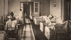Pitkäniemen mielisairaala 1900-luvun alku.