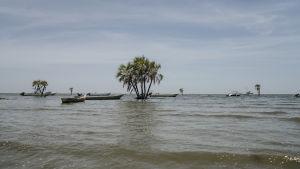 Turkanasjöns vatten varierar mycket enligt regnen och värmen. Nu har det inte regnat en droppe sedan april, men då orsakade de häftiga regnen förödande översvämningar.