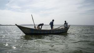 Många som inte har motor på sin båt fiskar närmare stranden. Men de drar också upp mindre fiskar, som ofta ännu kunde få växa lite till