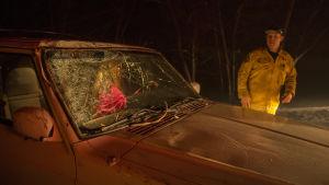 En bradman visar vägen för en kvinna som kom undan med livet i behåll då ett träd föll över hennes bil