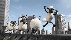 Late Lammas ja kaverit seikkailevat katolla.