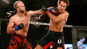 Kaksi miestä nyrkkeilevät