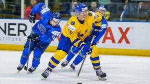 Fabian Zetterlund är en svensk ishockeyspelare.