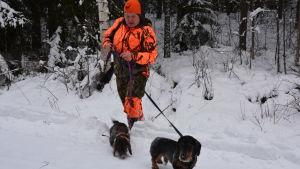 Vitsvanshjortjägaren Michaela Poutanen och hennes två taxar Åskan och Blixten.