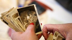 En person med röda fingernaglar håller i en bunt med mer än 20 gamla svartvita fotografier från 1940-talet. På den översta bilden sitter tre damer i klänningar i en glänta.