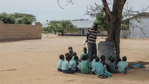 kenianska barn sitter under träd och har skollektion