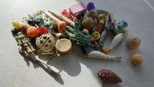 Plastfynd ur en död albatross mage från Kure atollen