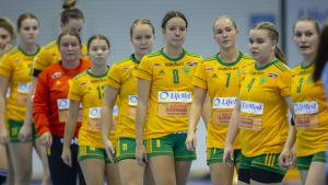 Sjundeå IF säsongen 2018-19.