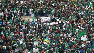 Demonstration i Algér 19.4.2019