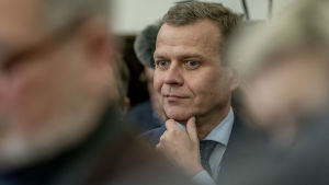 Petteri Orpo ,Antti Rinteen hallitusneuvottelu infossa