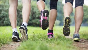 Benen av tre kvinnor som joggar på gräs.