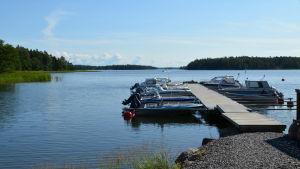 En brygga med båtar vid vattnet.