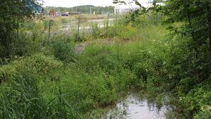 En bäck med ett stängsel i bakgrunden. Bakom stängslet ligger en avfallshanteringsstation.