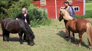 Två kvinnor står bredvid två hästar.