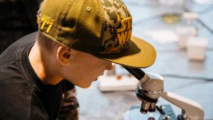Poika tarkastelee plantonia mikroskoopilla.