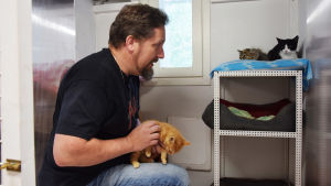 En man sitter på knä och håller i en gul kattunge i famnen. Bredvid honom finns en ställning med kattsängar där två andra kattungar sitter på en blå kudde.