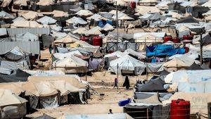 Lägret al-Hol i Syrien 8.8.2019 administreras av kurder.
