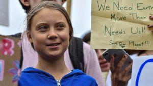 Greta Thunberg demonstrerar utanför Vita Huset i Washington.