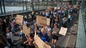 Klimatdemonstranter marscherar över en hängbro i Budapest