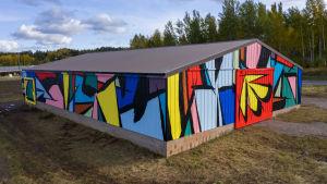 Sobekcis maalasi kokonaisen ladon kattavan muraalin Saloon. Kuva: Murat Mutlu