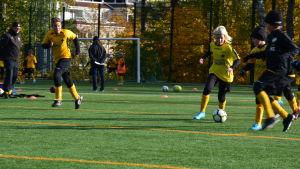 Fotbollsknattar spelar