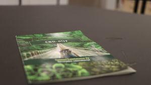 En broschyr för cannabisolja ligger på ett bord.