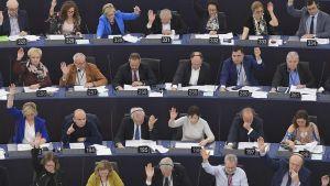 Europaparlamentet röstar i Strasbourg i Frankrike den 28 november 2019.
