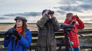 Egenlandin ohjelmajuontajat Nicke Aldén ja Hannamari Hoikkala etsivät kurkia taivaalta yhdessä